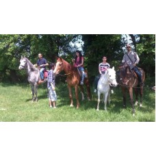 10 Package Horse Riding Trip Education Pak. 600 min